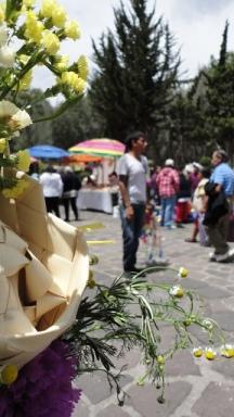 palmas de domingo de ramos. Xochimilco. Foto: Rafael G. Córdova