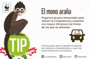 Final-Tips-WWF-06